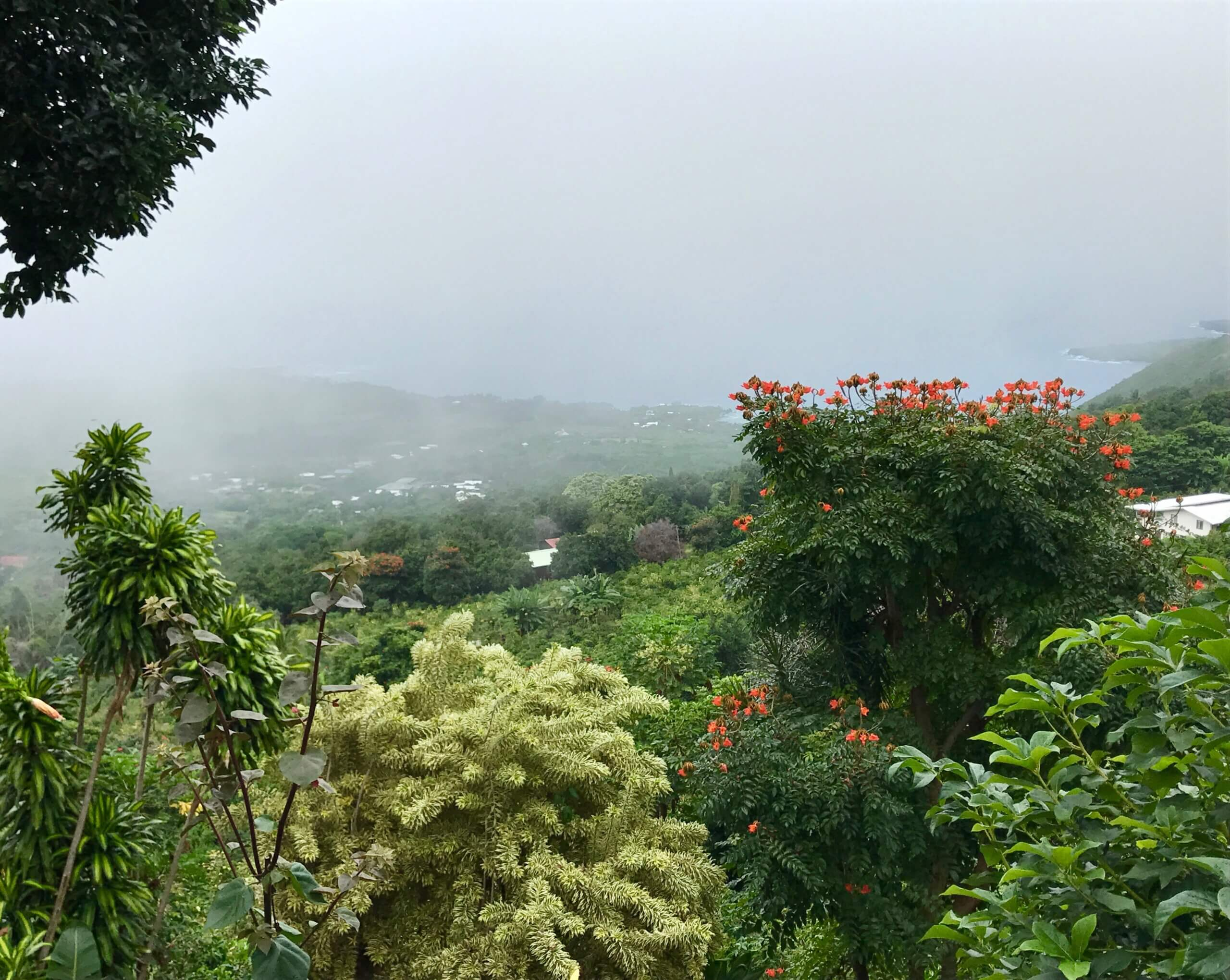 Kona views