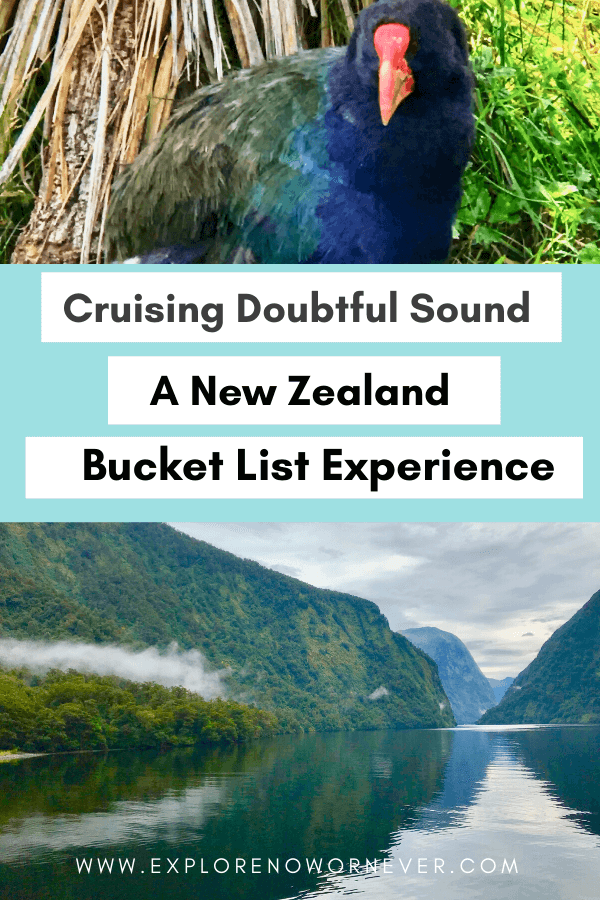 text overlay of endangered bird and fjord in Doubtful Sound