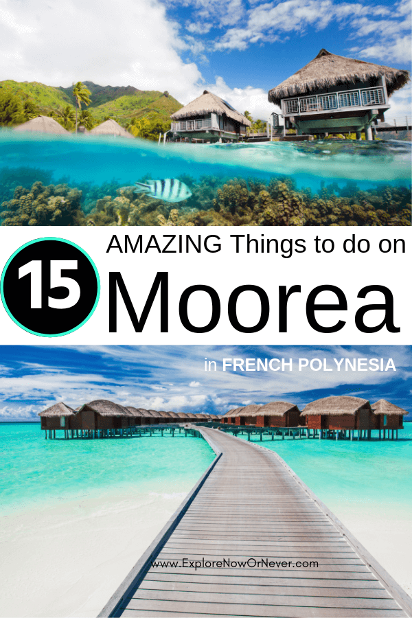 Things to do in Moorea | French Polynesia | French Polynesia travel |French Polynesian islands | Moorea French Polynesia things to do