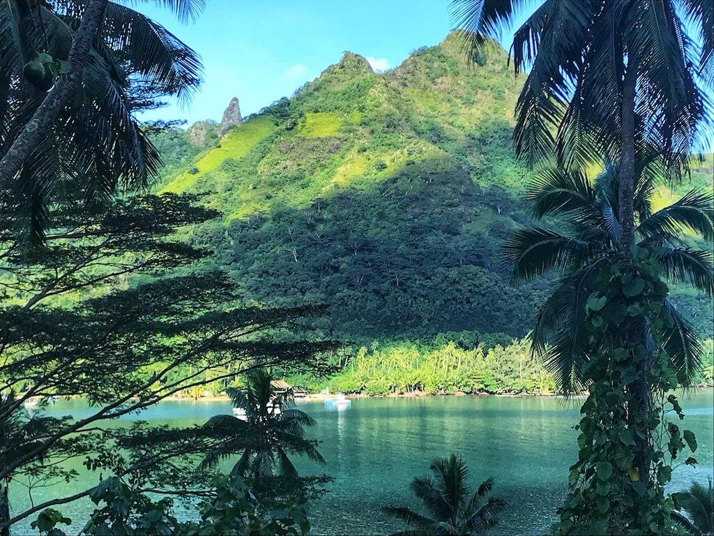 Things to do in Moorea: image of Opunohu Bay Moorea