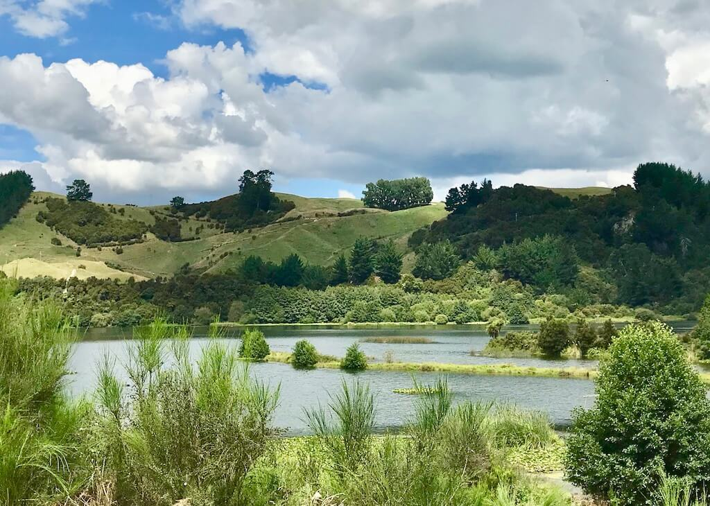 Rotorua river, clouds and scrubby landscape