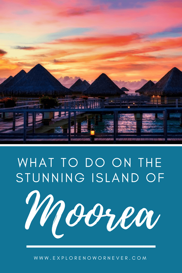 Wondering what to do on the beautiful island of Moorea in French Polynesia? Check out our in-depth guide to the best activities, restaurants and beaches in Moorea and get ready for the perfect island getaway! Includes tips on how to find airfare deals to Moorea and much more. #FrenchPolynesia #Moorea #WhatToDoMoorea #FoodInMoorea #Tahiti #IslandGetaways #Travel #IslandLif
