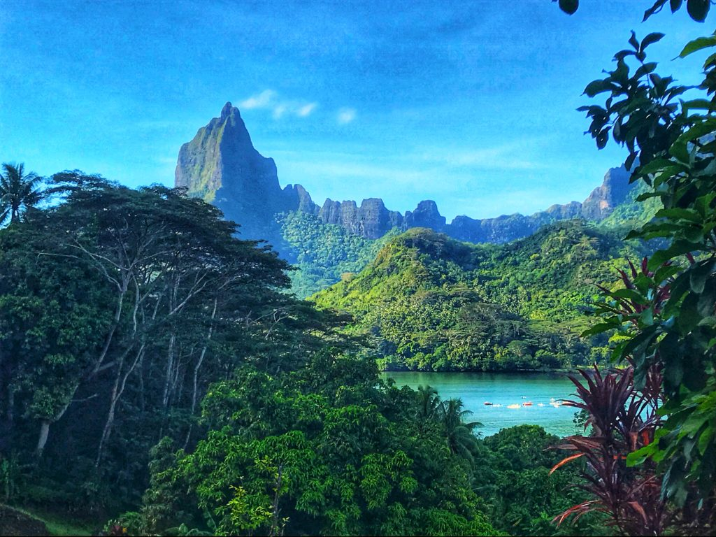Island Vibes 15 Epic Things To Do In Moorea Explore Now