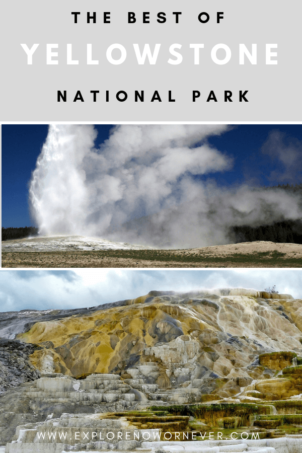 The Best of Yellowstone in 3 Days: Top hikes and sights, including Grand Prismatic Spring, bison in Lamar and Haden Valleys, and historical Old Faithful Inn #YellowstoneNationalPark #YellowstoneNationalParkphotography #YellowstoneNationalParkTips #YellowstoneNationalParkitinerary