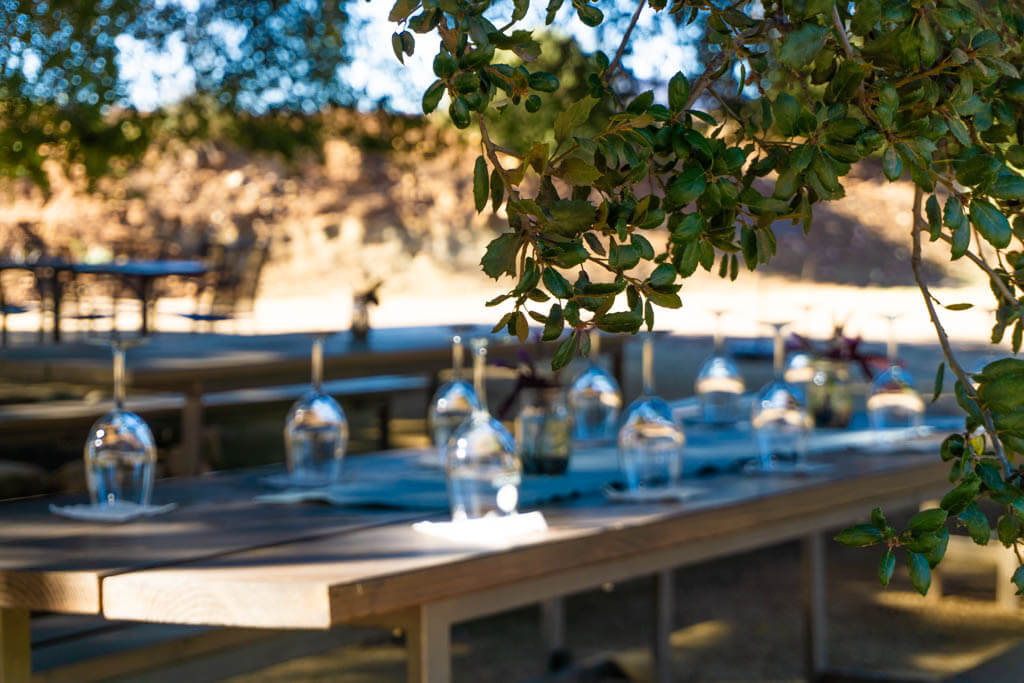 Magoni winery picnic table