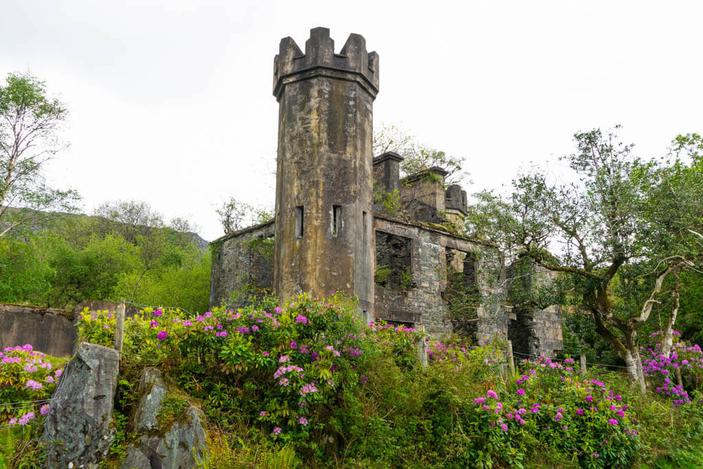castle ruins covered in pink flowers