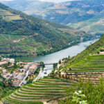 view of terraced vineyards in douro valley with river running through it