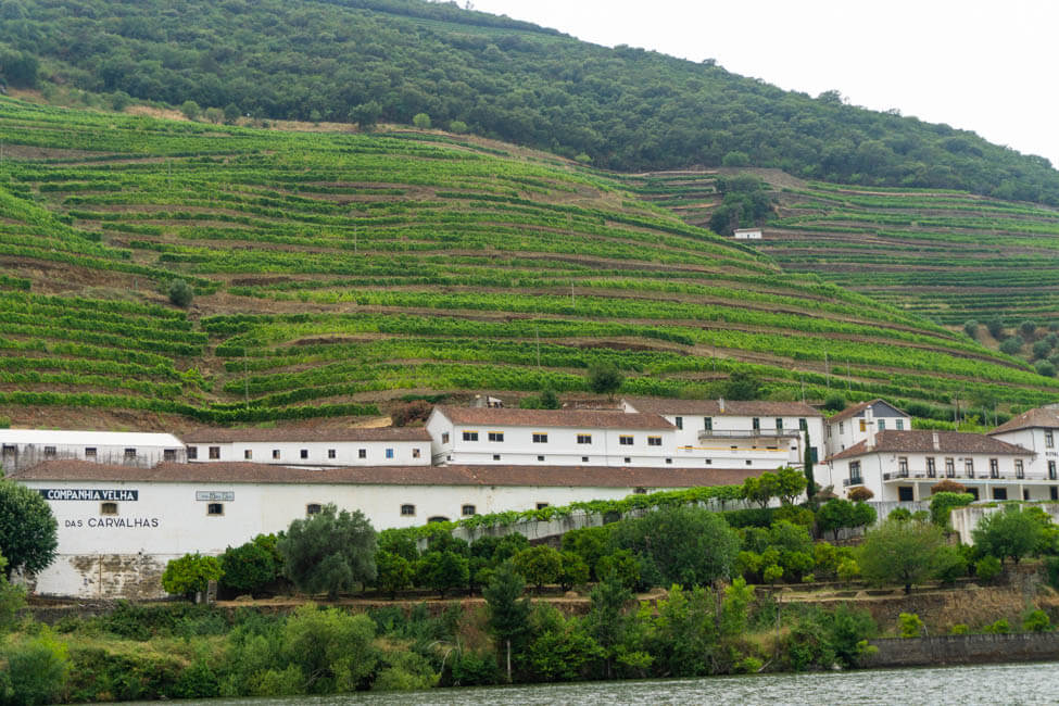 a large white building on a green terraced cliff on the Douro River
