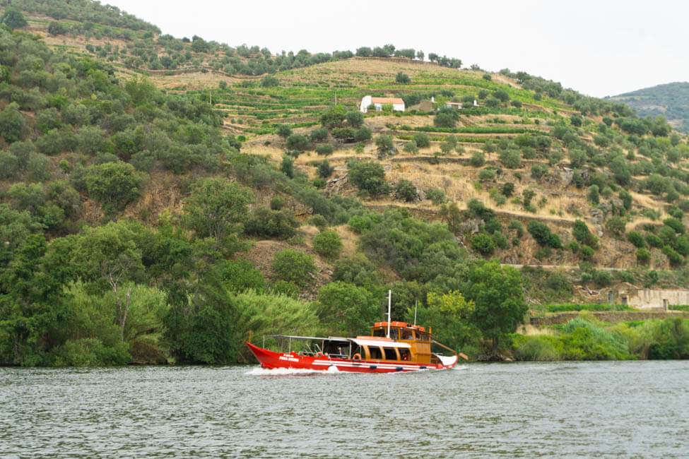 Red boat on the Douro River