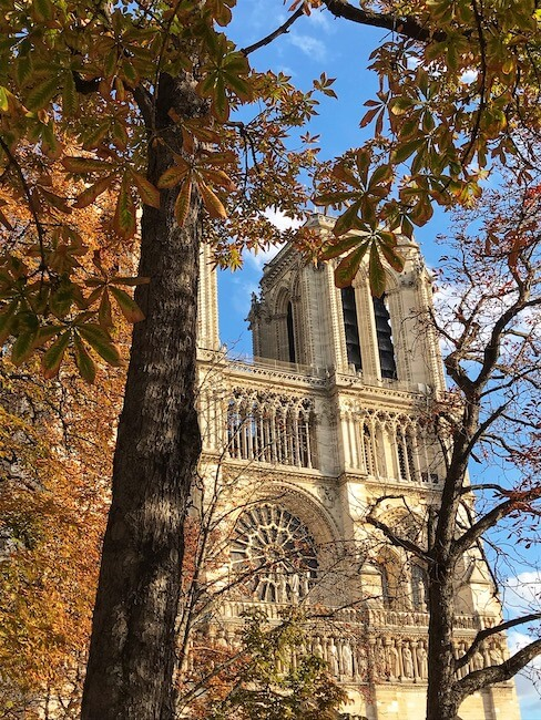 Notre Dame Cathedral in Paris in Autumn