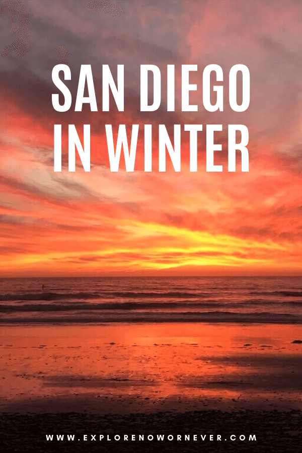 Heading to San Diego in winter? From whale watching and Korean massage to wine tasting and hiking, this guide by a local shares the very best activities. San Diego travel Things to do in San Diego | California bucket list | San Diego travel guide | Southern California travel | San Diego itinerary | San Diego vacation