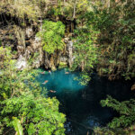 Lush tropical cenote with turquoise water and green vines