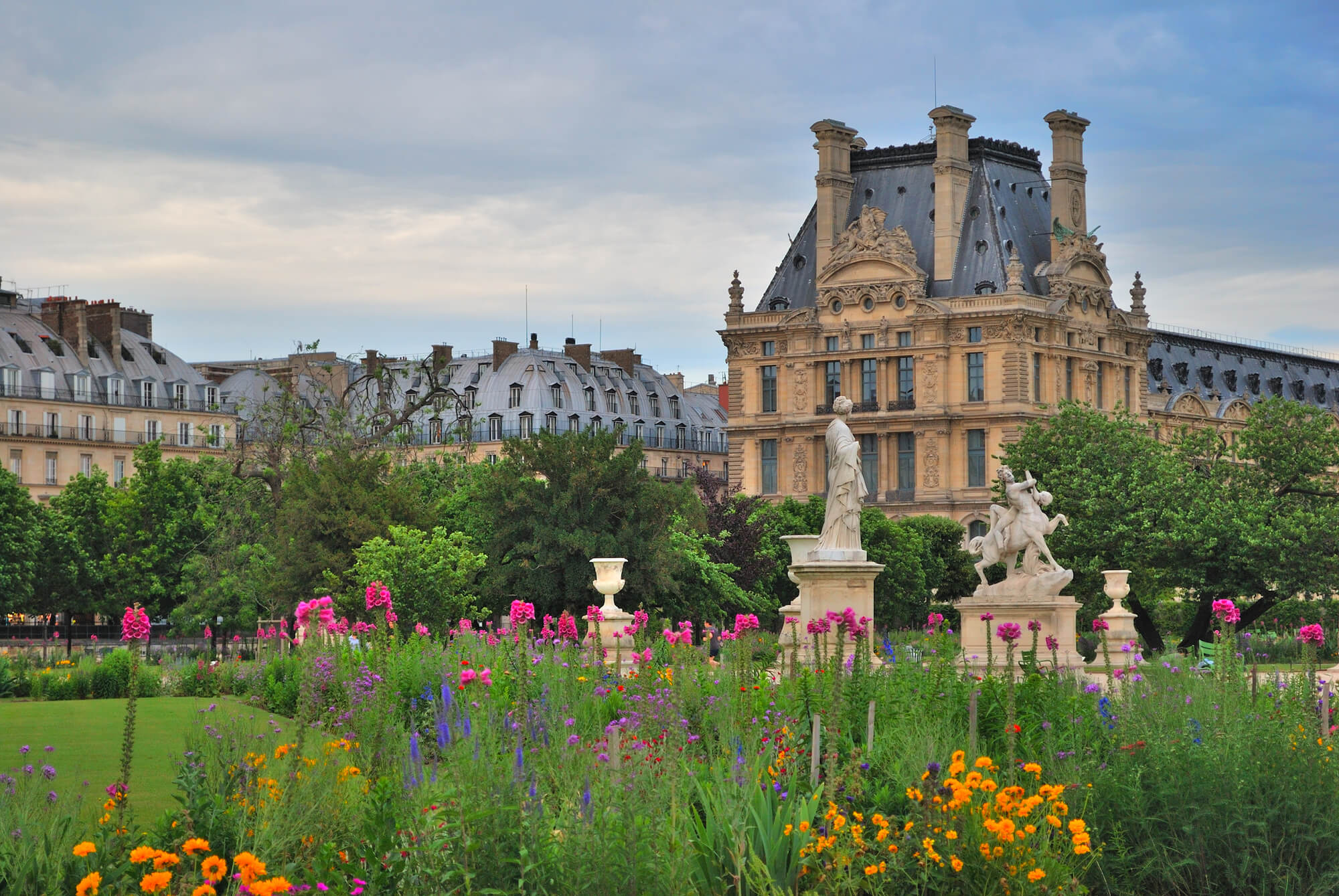 flowers in jardin des Tuileries near Louvre museum