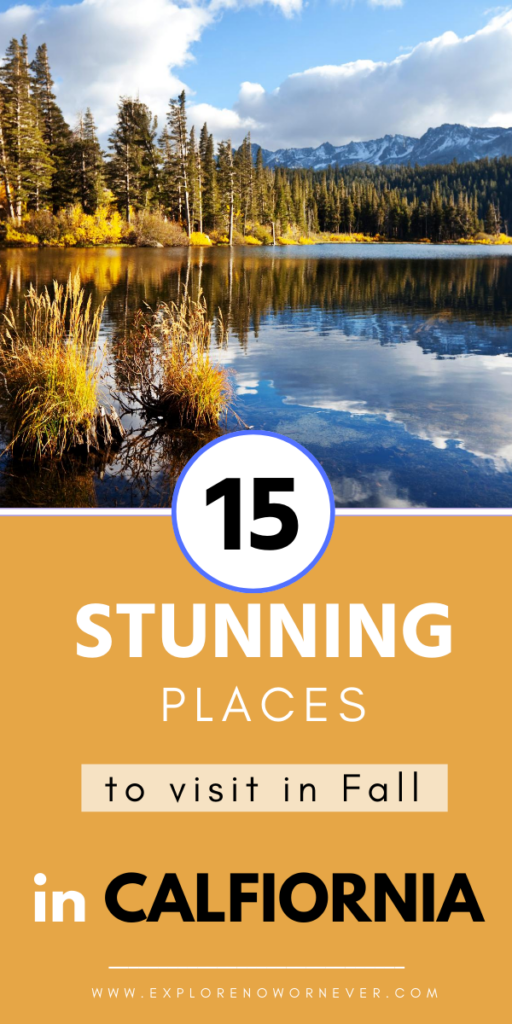 Heading to California in Fall? This is the ULTIMATE guide to where to go for fall leaf peeping, brilliant sunshine, beach culture, and unique fall festivals. California travel guide   best California vacation spots   California bucket list   California fall road trips   USA travel tips