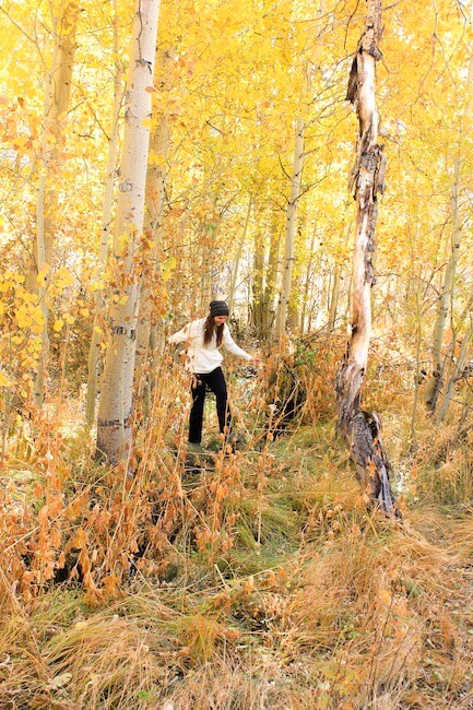 woman in a vibrant yellow forest