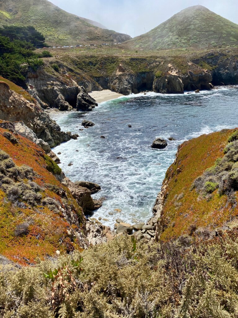 view of sea inlet and succulents in Garapata State Park