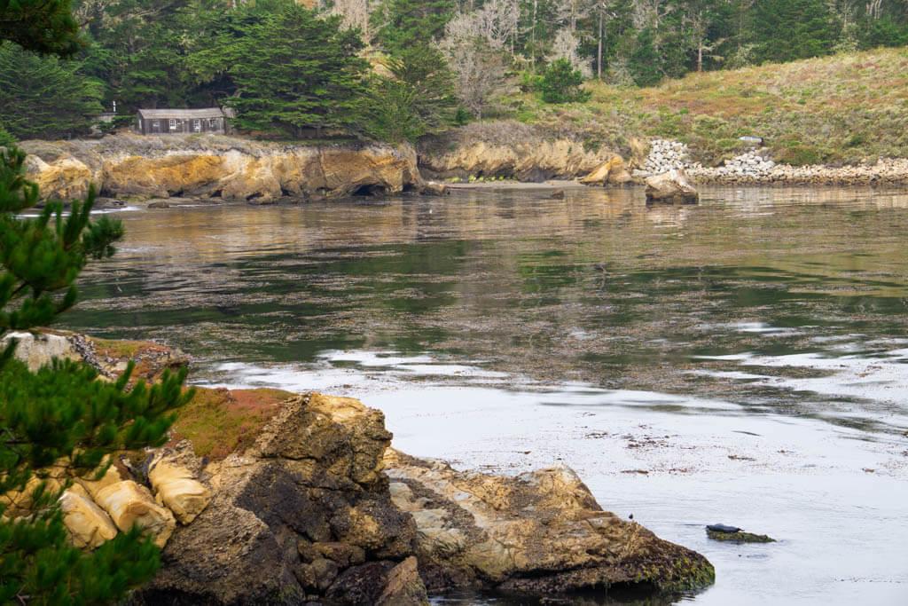 farmhouse behind a lagoon in Point Lobos State park
