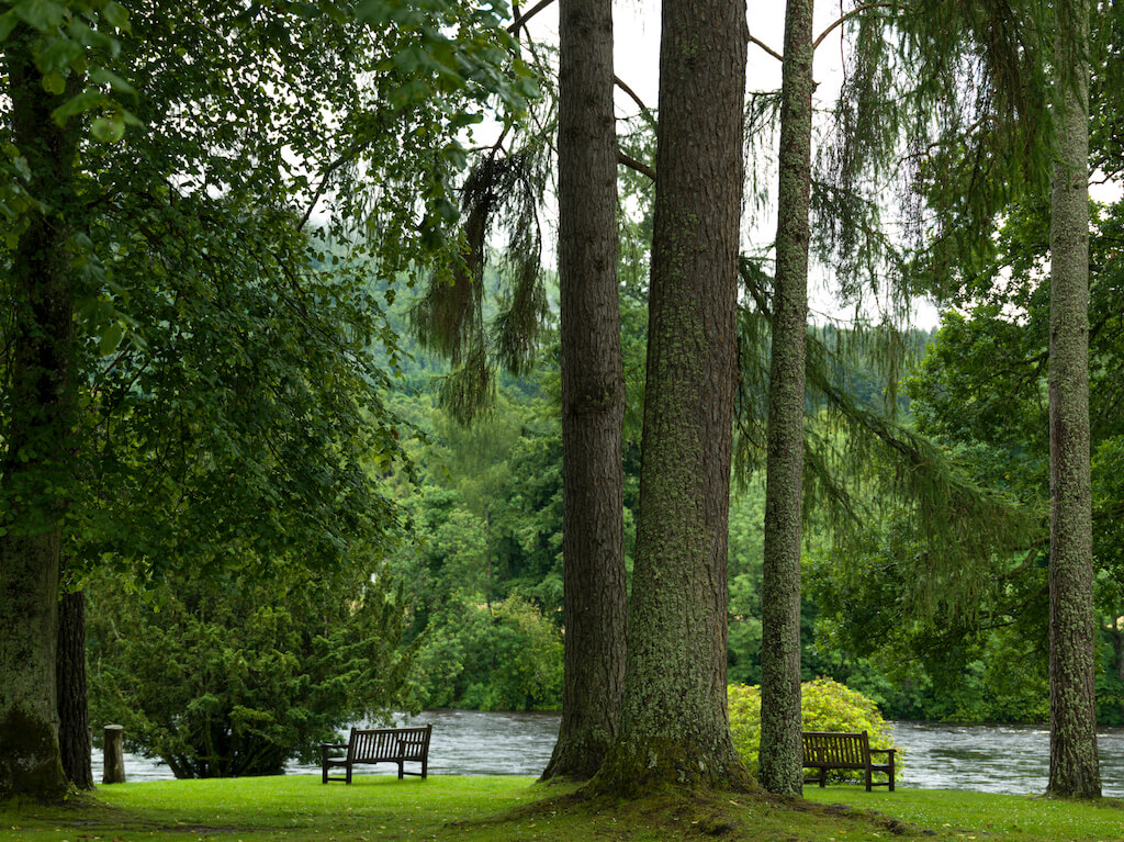 View of trees and bench by River Tay, Dunkeld Cathedral, Dunkeld, Perth and Kinross, Scotland