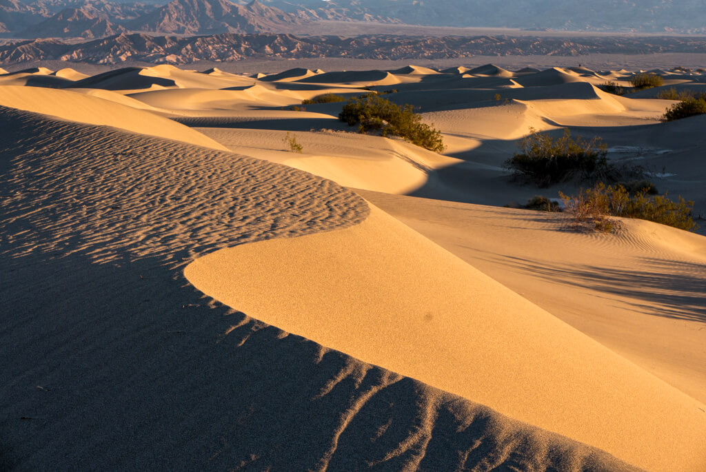 the desert in Death Valley in January