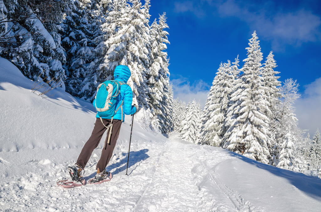 woman snow shoeing in alpine forest