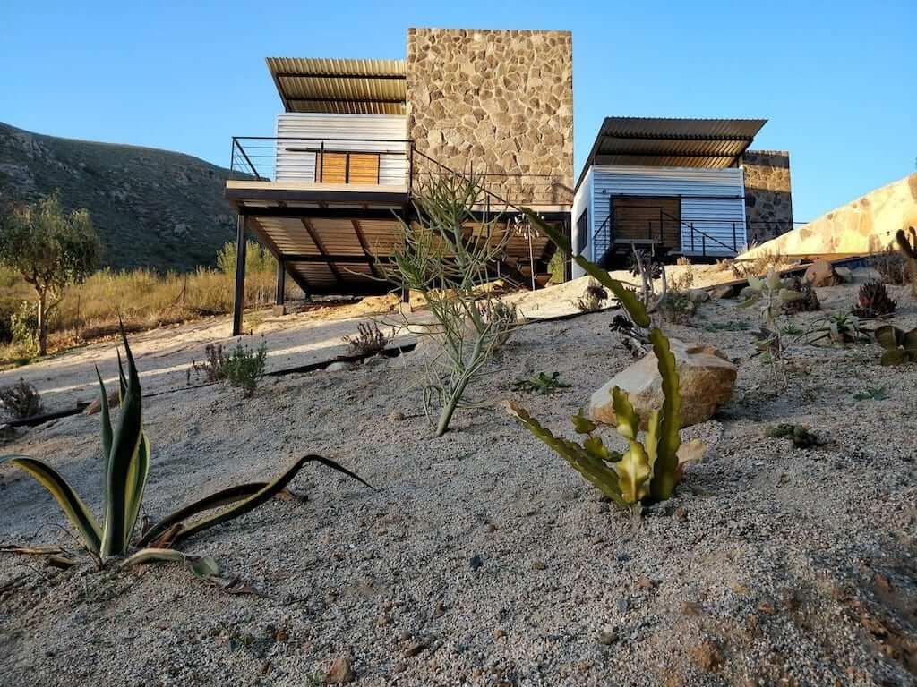 cabin exterior and desert cactus