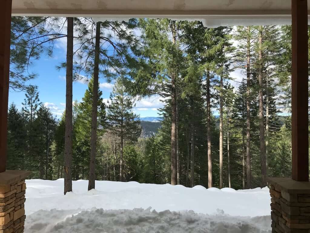 forest and snow view from Lassen home