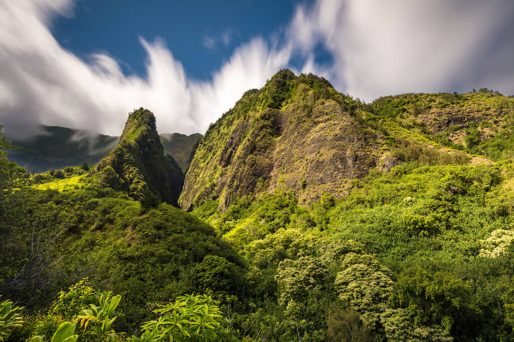 lush trees in Iao Valley