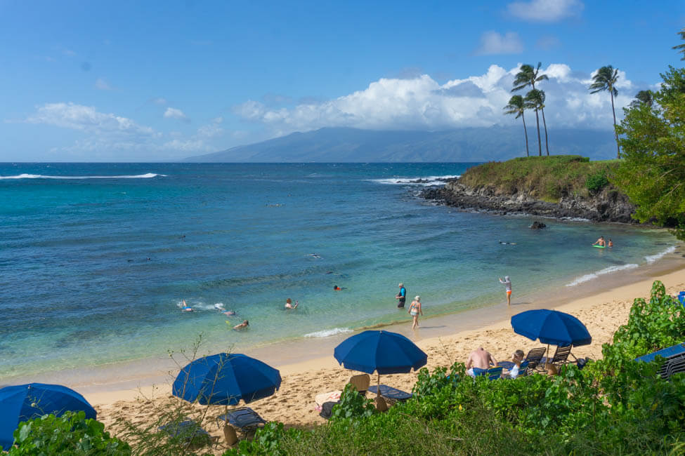 blue umbrellas on Lahaina beach