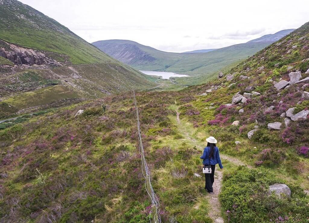 woman in purple heather strewn Mourne Mountains