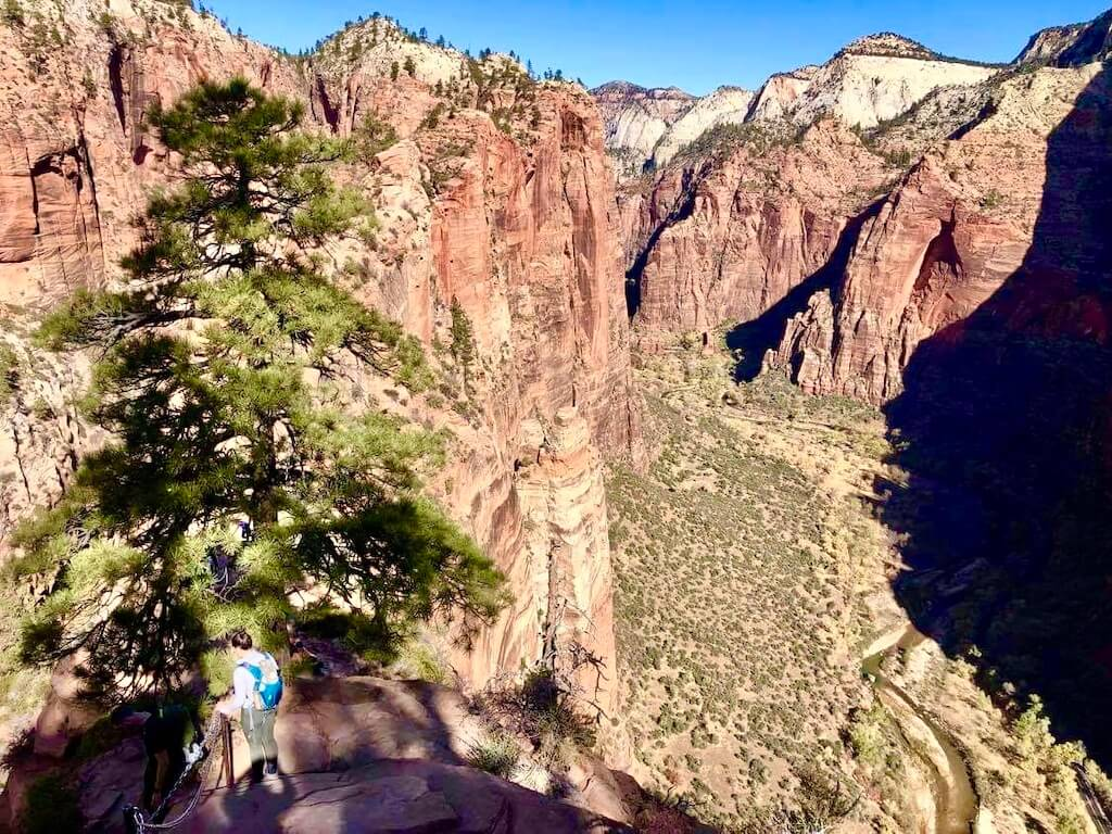 View of Zion Canyon from Angel's Landing