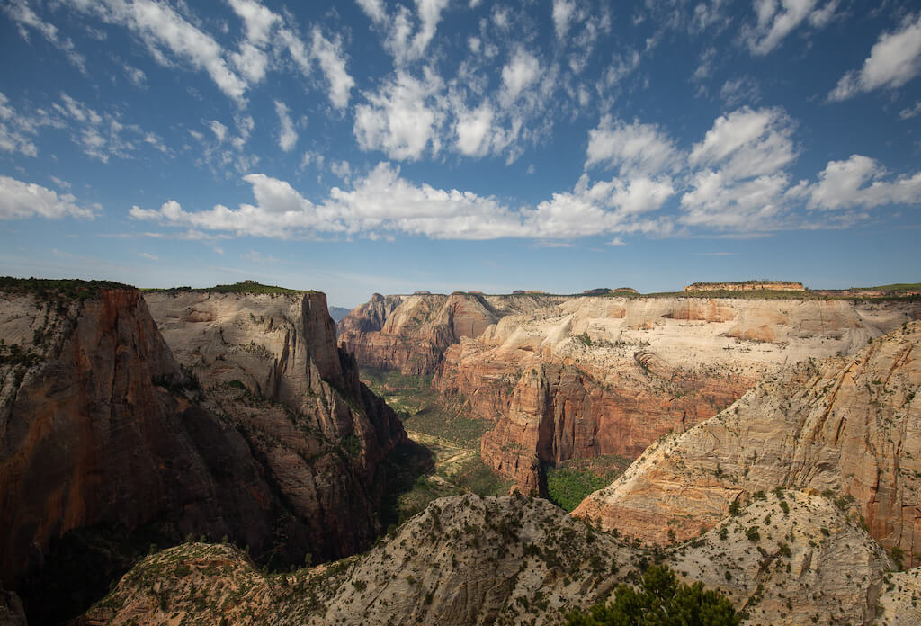 View of canyon from observation Point