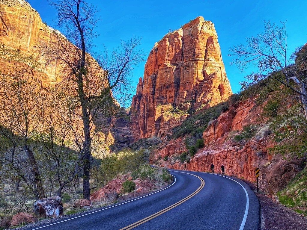 Road through Zion National Park