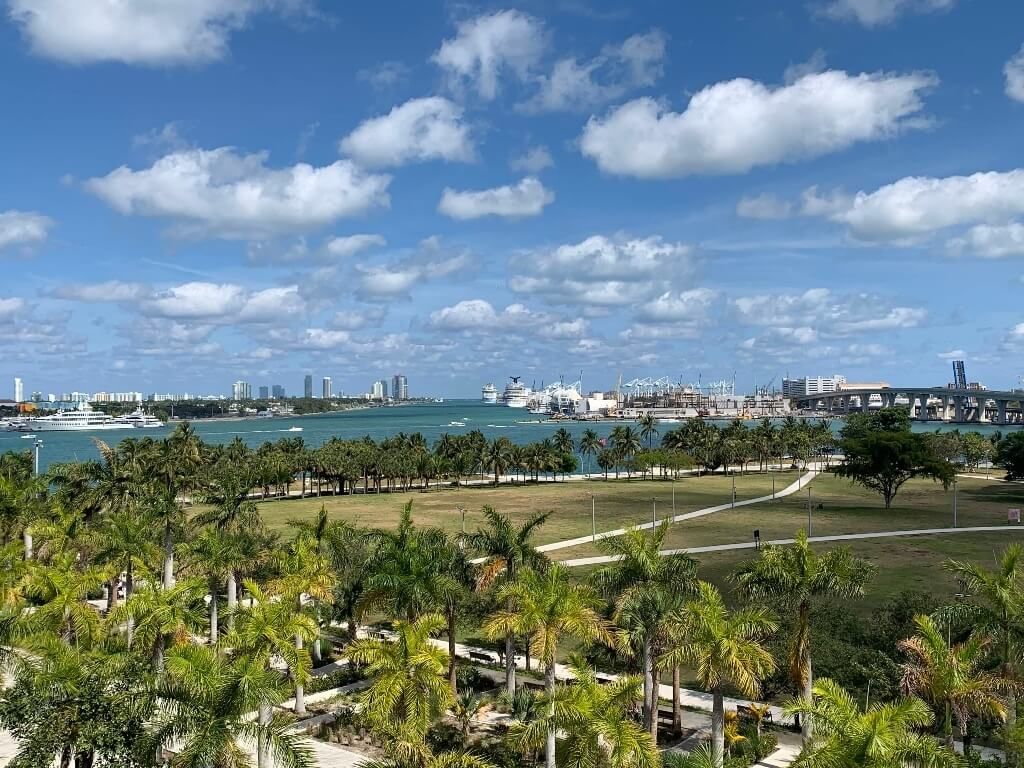 Miami skyline with palm trees and ocean