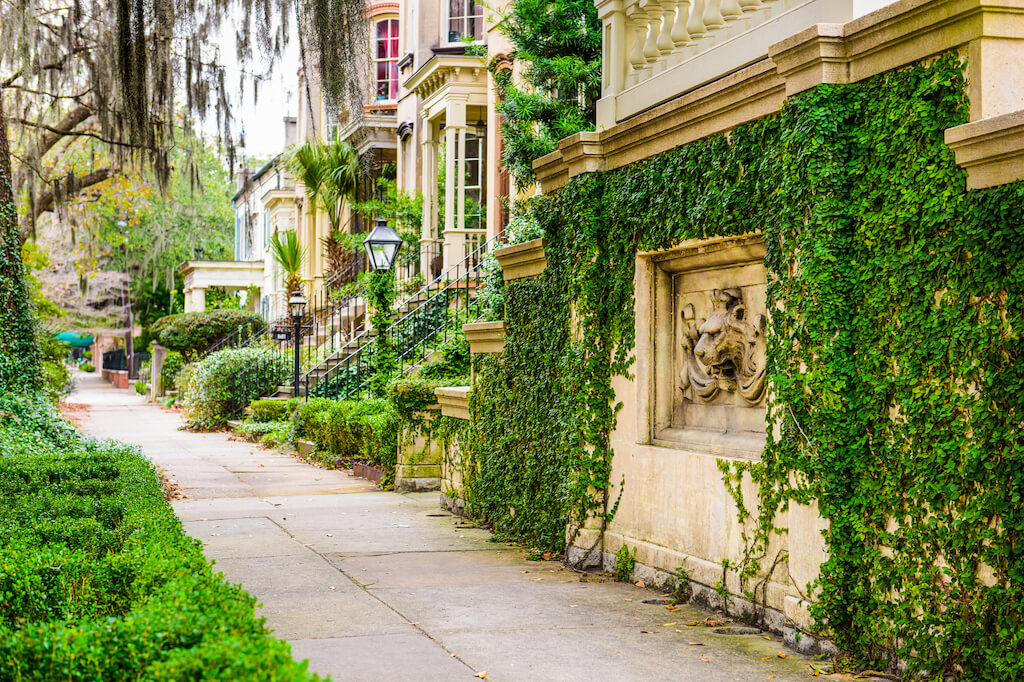 ivy colored buildings in Savannah's historic district