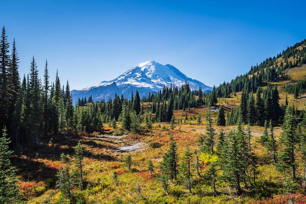 snowy mountain peak with pine trees in Mount Rainier in October