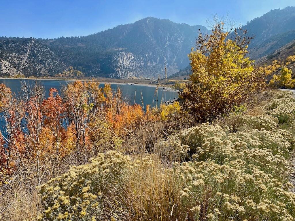 colorful June Lake in fall