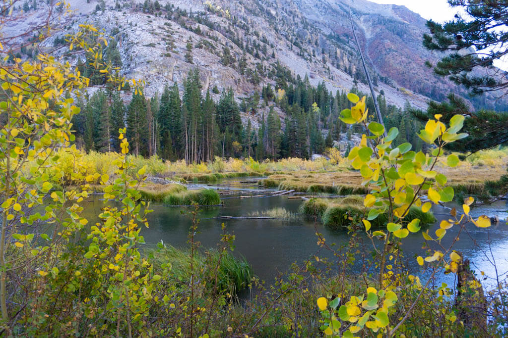 serene lake surrounded by mountains and golden foliage