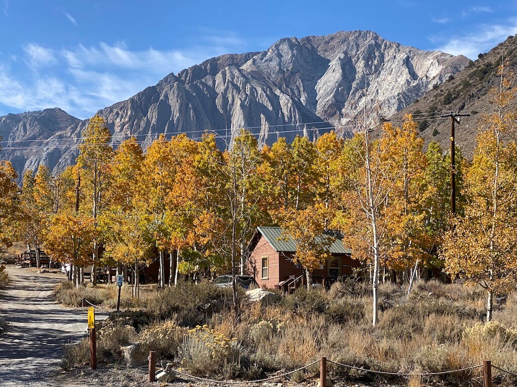 cabin and golden Aspens in front of mountains