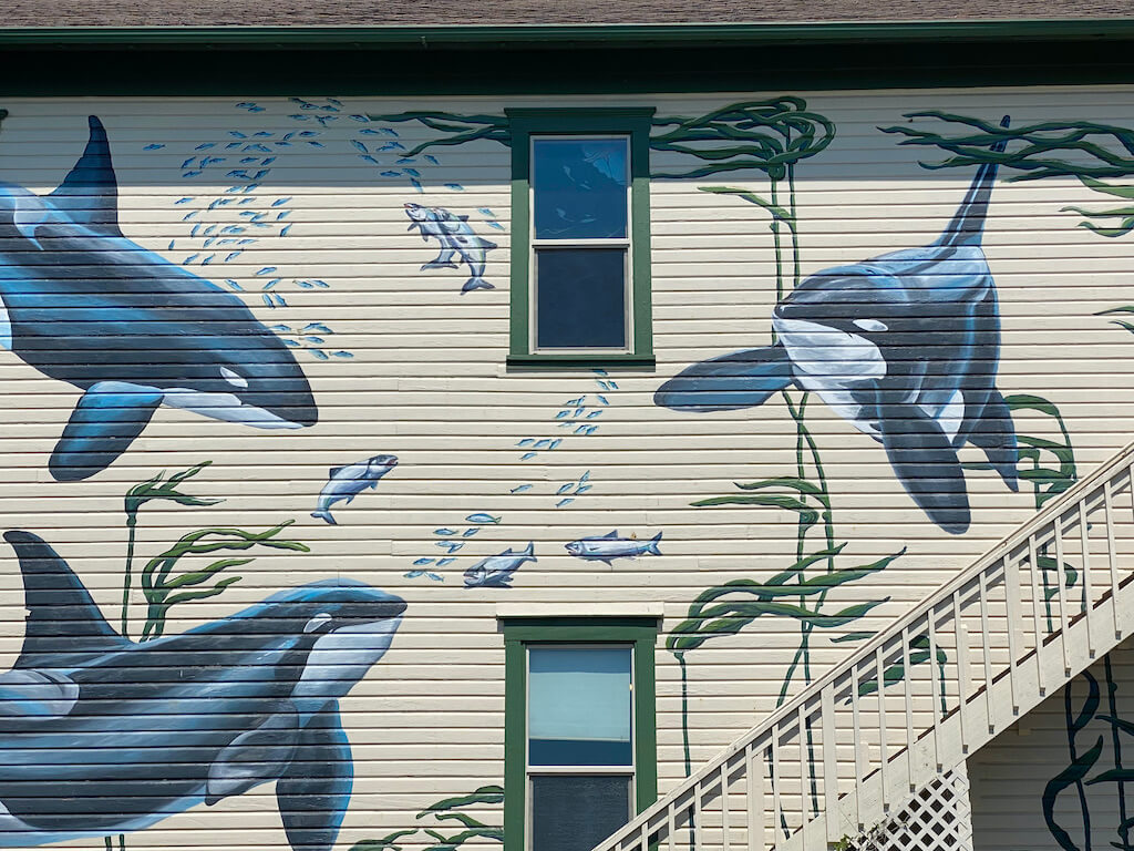 whale murals on a building at Whale Museum