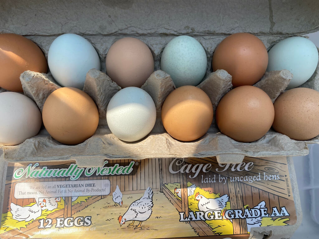 colorful eggs from a farm stand
