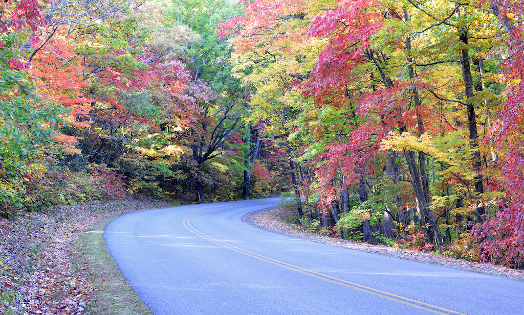 winding country road with colorful fall leaves