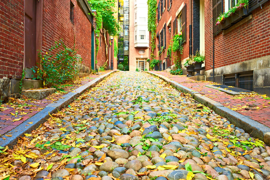colorful pebbles and leaves on historic Acorn Street in Boston