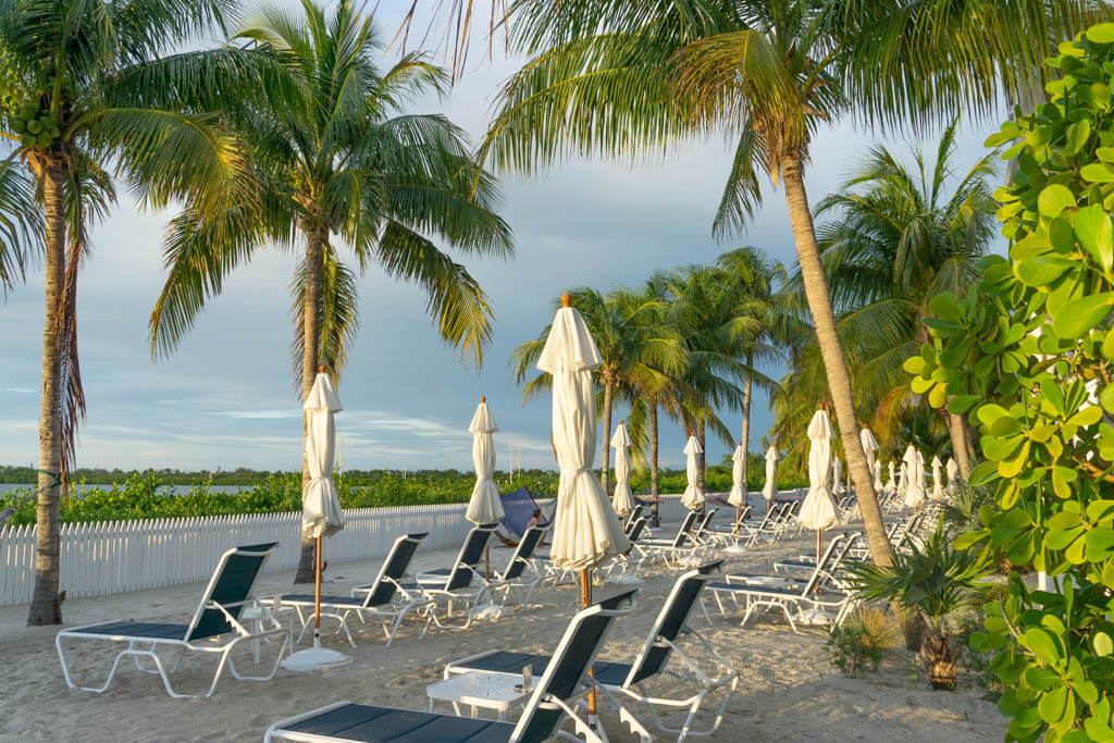 lounge chairs and palm trees on a white sand beach