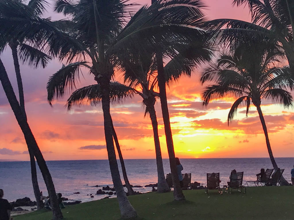 colorful Maui sunset with palm trees by ocean
