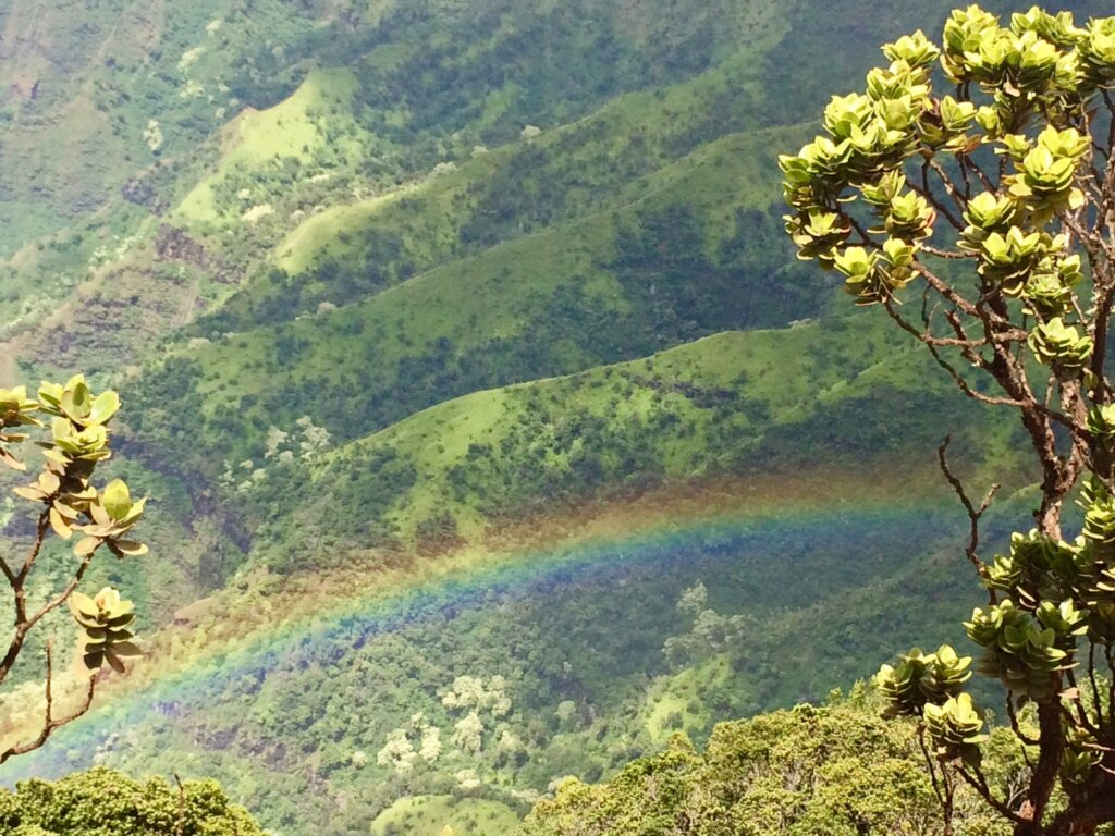 rainbow over green Na Pali cliffs, one of the best things to do in Kauai