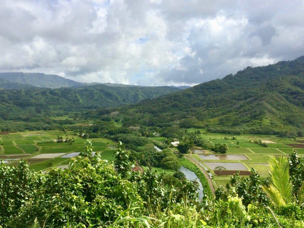 landscape view of North Shore Kauai
