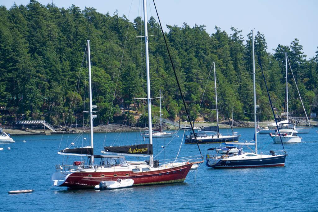 sailboats on a bay