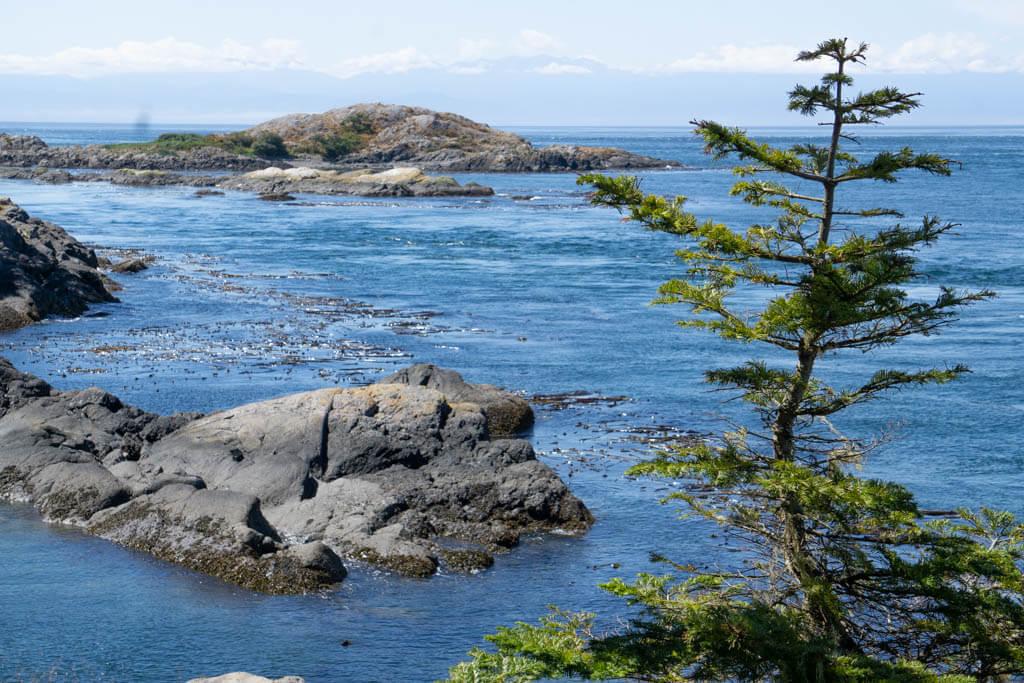 rocks in a bay